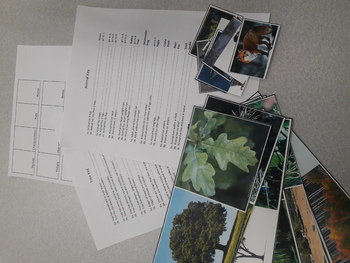 Animal and Plant Classification Lesson