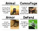 Animal and Plant Defenses Science Vocabulary Cards