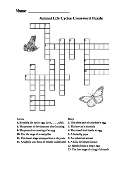 Animal and Plant Life Cycle Crossword Puzzles