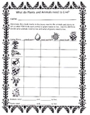 Animal and Plant Needs Data Chart