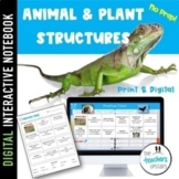 Animal and Plant Structures