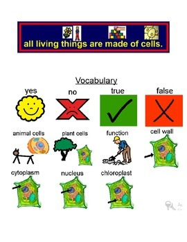 Animal and Plant cell picture symbol vocabulary