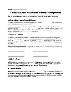 Animal and Plants Adaptations Internet Scavenger Hunt