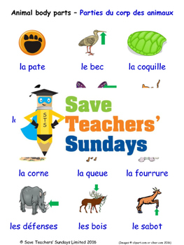 Animal body parts in French Worksheets, Games, Activities and Flash Cards