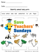 Animal body parts lesson plan and worksheets (2 levels of