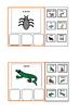 Autism/ Literacy - Sorting Animal categories