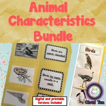 Animal characteristics:Fish, insects, mammals, reptiles, amphibians and birds
