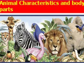 Animal characteristics and body parts flipchart