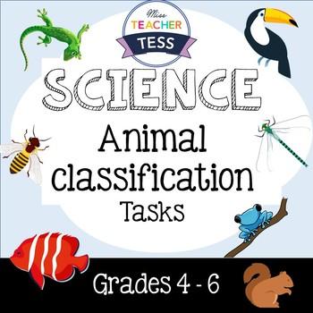 Animal classification Task