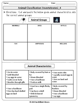Animal classification activities:Sorting animals by Picture and  Characteristics