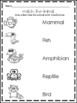 Animal classification and sorting worksheets and activities