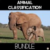 Animal Classification Sorting Activity STEM Activity Worksheet Bundle