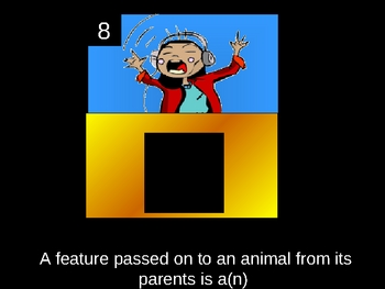 Animal classifications powerpoint review game
