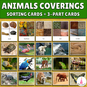 Animal coverings sorting activity + 3-part cards