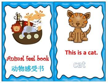 Animal feel book English