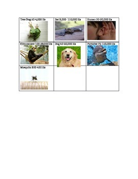 Animal frequencies