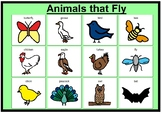 Animal matching boards