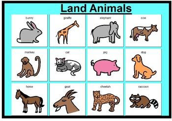 Animal matching boards