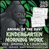 Animal of the Day! -- Kindergarten Morning Work Bundle -- ENTIRE YEAR