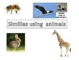 Animal similes