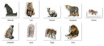 Animal images (clip-art faux-stickers) - Feline family
