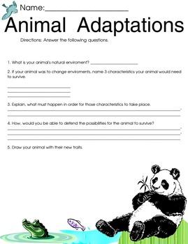 Animal traits worksheet