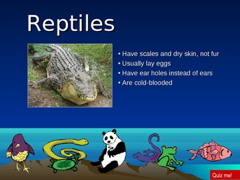 Animal type classification PowerPoint game