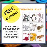 Animal vocabulary cards / flashcards / pocket chart