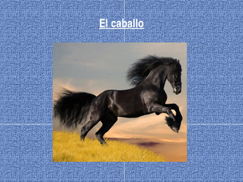 Animal vocabulary in Spanish-power point