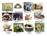 Animal wants and needs
