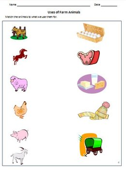 animals birds and insects worksheets for grade 1 2 kindergarten. Black Bedroom Furniture Sets. Home Design Ideas