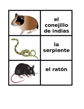 Animales (Animals in Spanish) Vocabulary Concentration games