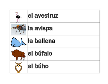Animales (Animals in Spanish) word wall