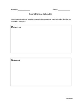 Animales Invertebrados Dual Language Hojas de trabajo