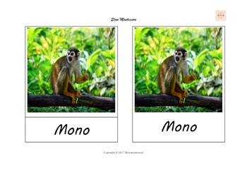 Animales Salvajes. Tarjetas de 3 partes Montessori