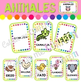 Animales - Tarjetas de vocabulario - Colour me Confetti