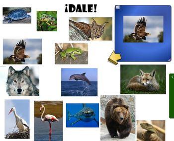 Animales de España