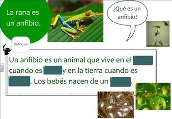 Animales de Norteamérica