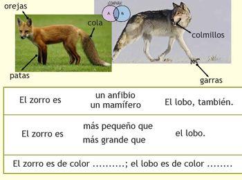 Animales de mi entorno