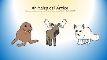 Animales del ártico para kinder