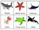 Animales del océano Escribiendo alrededor del salón