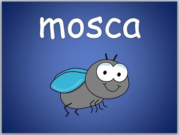 Animales e Insectos PowerPoint