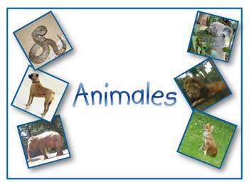 Animales en Español