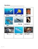 Animales marinos juego de silabas - juego de memoria - vocabulario