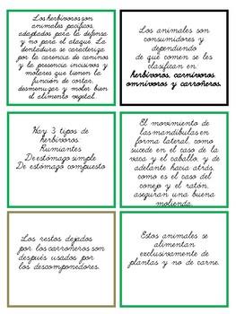 Animales según su alimentación/ Animal diet - Montessori