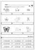 Animales vertebrados e invertebrados | Vertebrate and inve