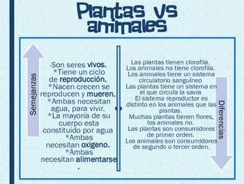 Animales vs, Plantas