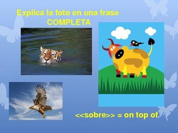 Animales y Ambiente - Vocab practice PPT