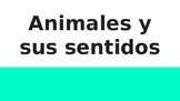 Animales y sus sentidos (4-LS1-1)