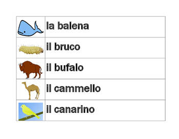 Animali (Animals in Italian) word wall
